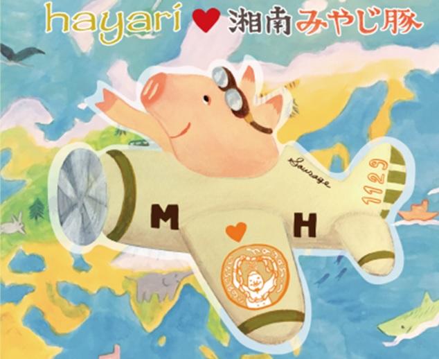 hayari×みやじ豚コラボバナー